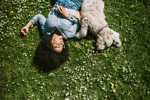 A Young Woman Rests in the Grass With Pet Poodle Dog - gettyimageskorea
