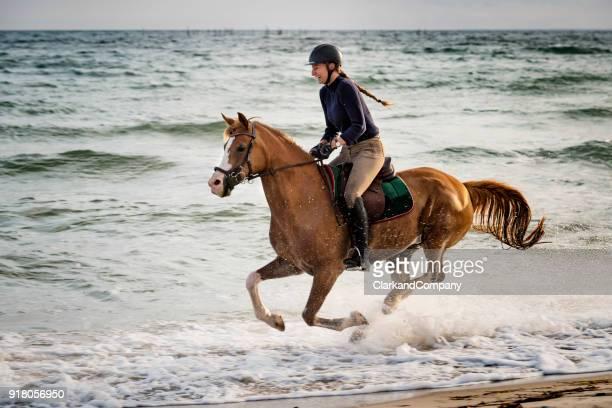 若い女性は、ビーチに沿って彼女のアラビア馬に乗って。