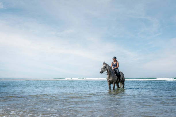 Young woman riding horse on the beach. On the Atlantic Ocean in France.