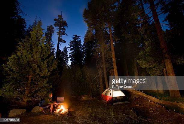 a young woman roasts marshmallows around a campfire. - sequoia national forest stock photos and pictures