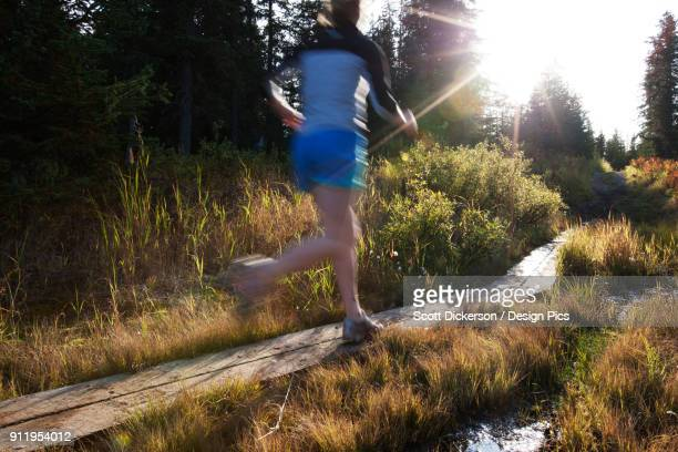 a young woman runs on wooden boards through a forest - home run ストックフォトと画像