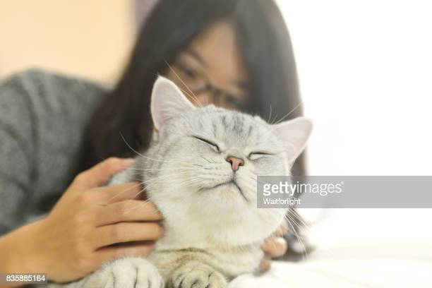 Young woman scratching cat on bed
