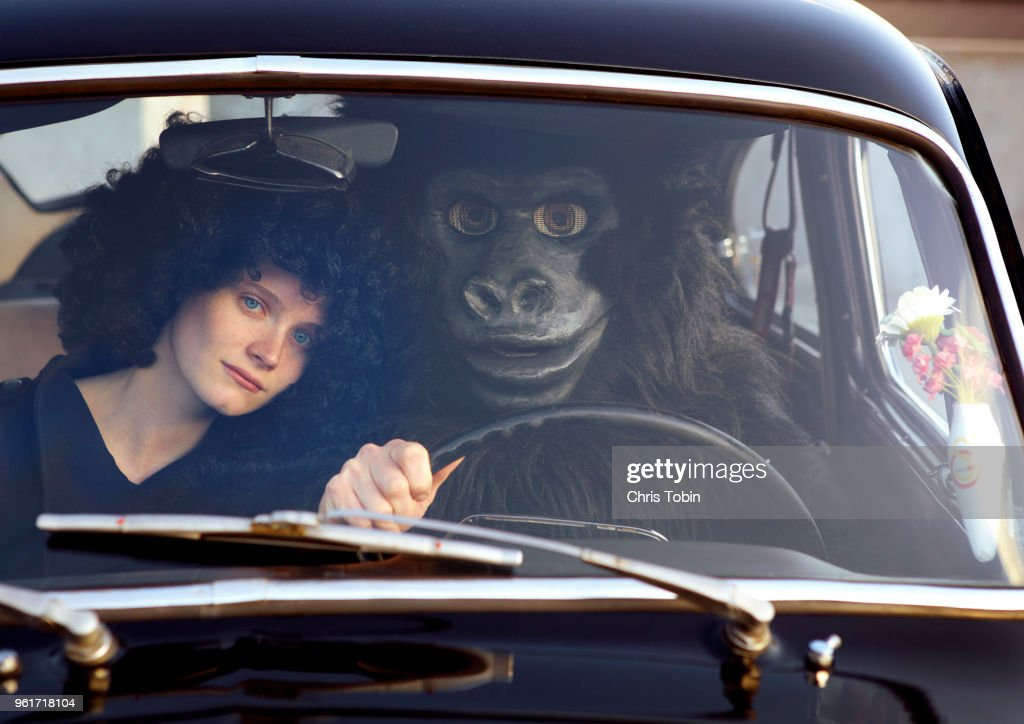 Young woman sitting in car with a gorilla : Stock Photo