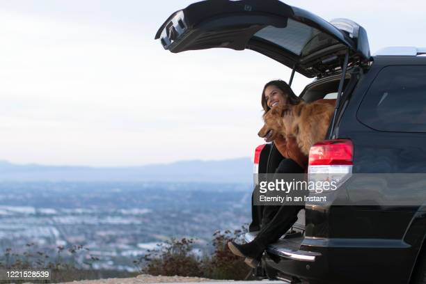 young woman sitting in the back of her car with her golden retriever - boot stock pictures, royalty-free photos & images