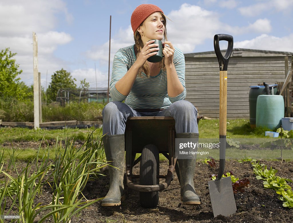 Young Woman Sitting In Wheelbarrow In Allotment Stock ...