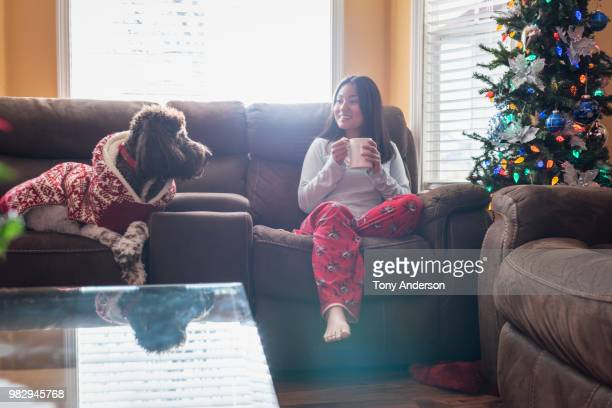 young woman sitting near christmas tree with her dog - pretty vietnamese women stock pictures, royalty-free photos & images