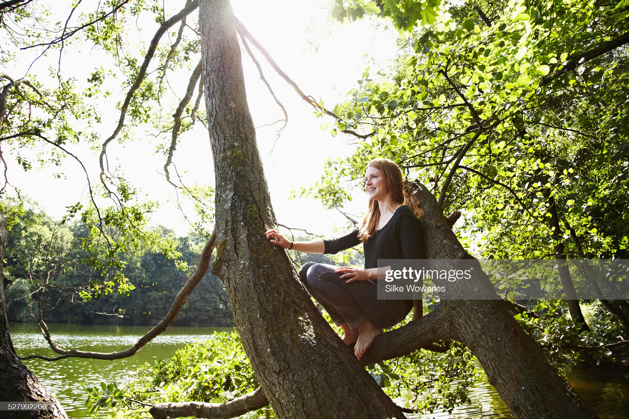 https://media.gettyimages.com/photos/young-woman-sitting-relaxed-on-branch-picture-id527992206?s=2048x2048