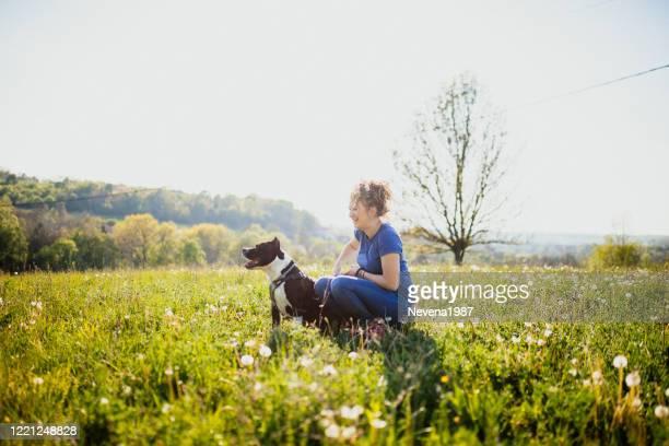 jonge vrouwenzitting met amerikaanse terriër staffordshire - american staffordshire terrier stockfoto's en -beelden