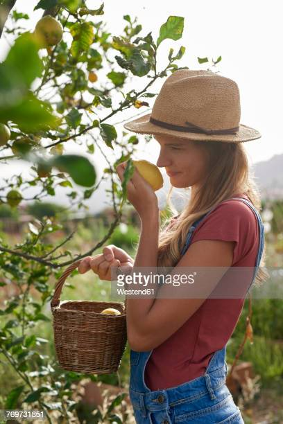Young woman smelling a picked lemon