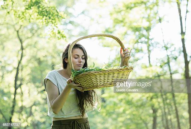young woman smelling foraged wild herbs in forest, vogogna, verbania, piemonte, italy - foerageren stockfoto's en -beelden