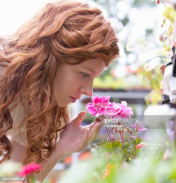 Young woman smelling pink geranium, profile, close-up