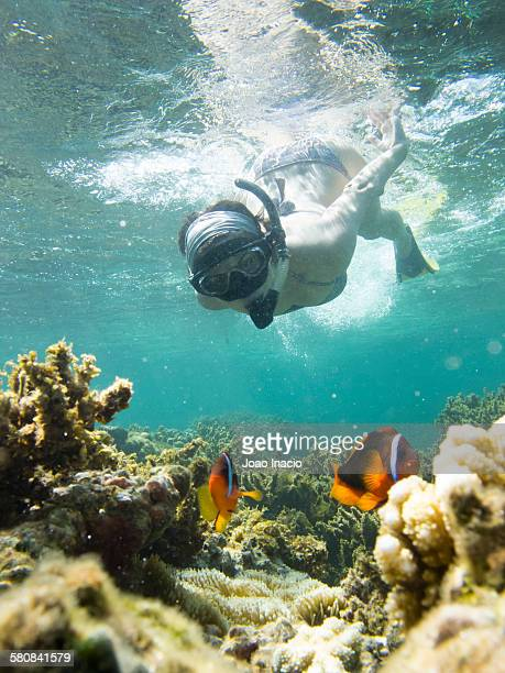 Young woman snorkelling in clear blue water