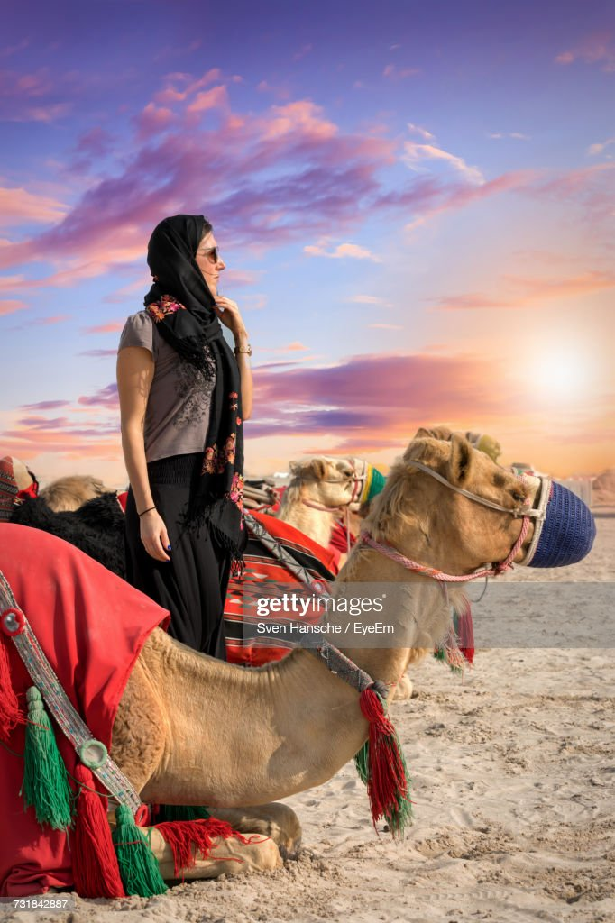 Young Woman Standing Amidst Camels At Desert Against Sky During Sunset : Stock Photo
