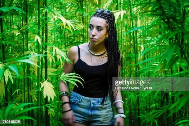 Young Woman Standing Amidst Cannabis Plants