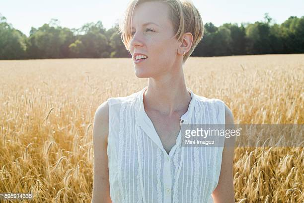 a young woman standing in a cornfield looking around her,  - sleeveless stock pictures, royalty-free photos & images
