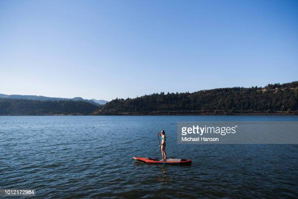 a young woman standup paddleboards (sups) on the columbia river in the columbia river gorge on a sunny day. - michael stock photos and pictures