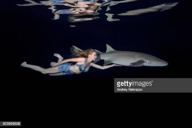 young woman swims with shark at night, tawny nurse shark (nebrius ferrugineus),ocean, maldives - nurse shark stock photos and pictures