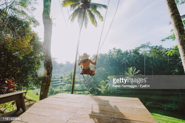 young woman swinging at rice terrace - bali photos et images de collection