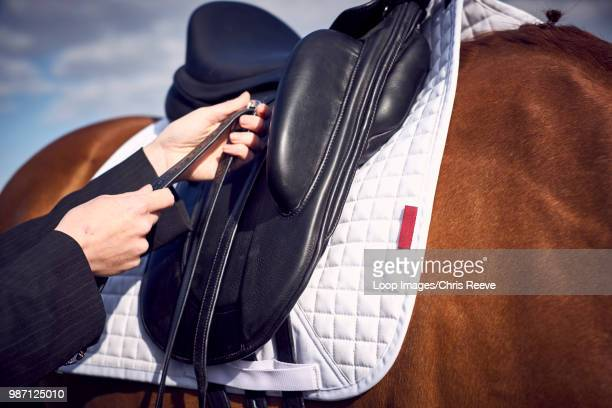 A young woman tacking up her horse prior to a ride