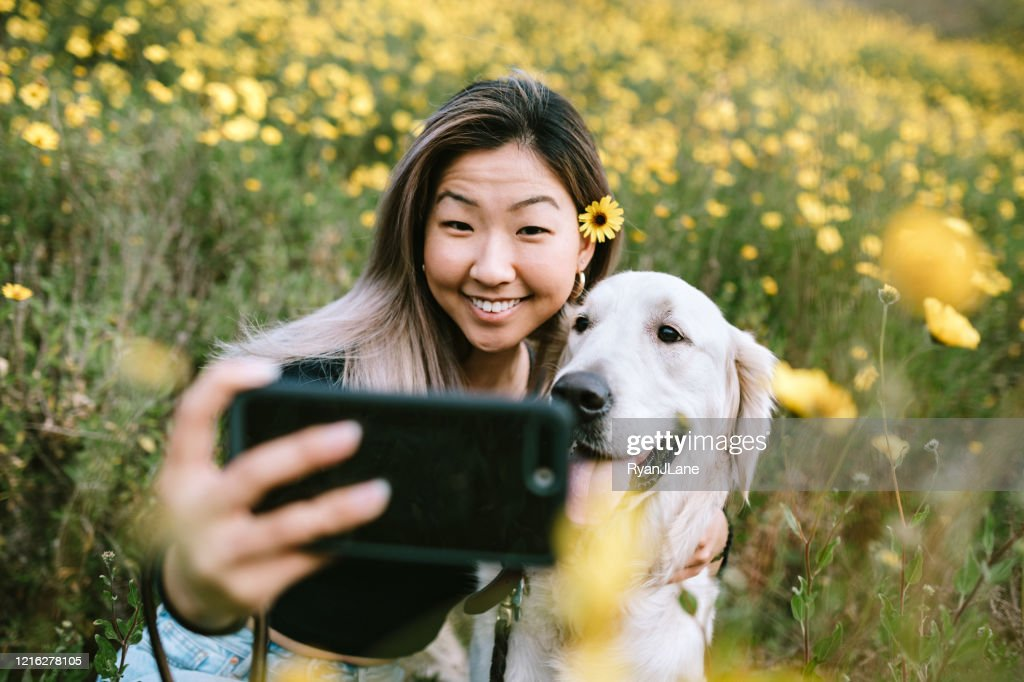 Young Woman Takes Selfie With Her Dog In Flower Filled Field : Stock Photo