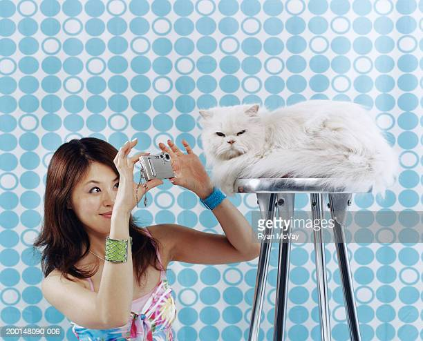 Young woman taking photograph of Persian cat