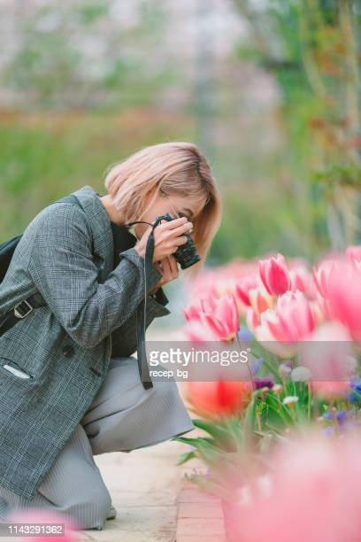young woman taking photos of tulips - millennial pink stock pictures, royalty-free photos & images