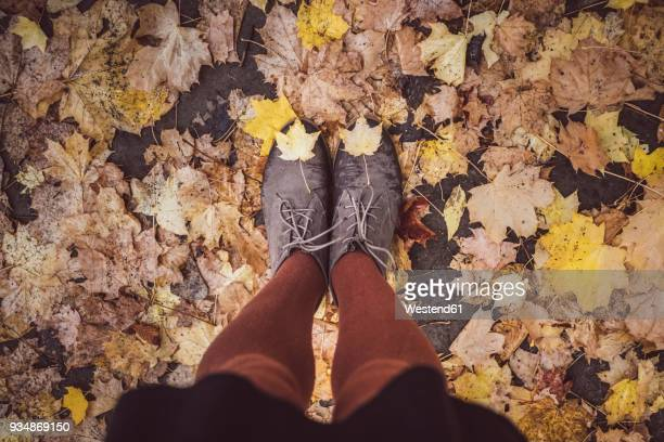 Young woman taking selfie of her legs in autumn, partial view