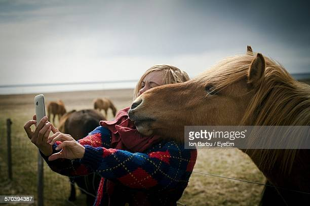 young woman taking selfie with brown horse in ranch - equestrian animal photos et images de collection