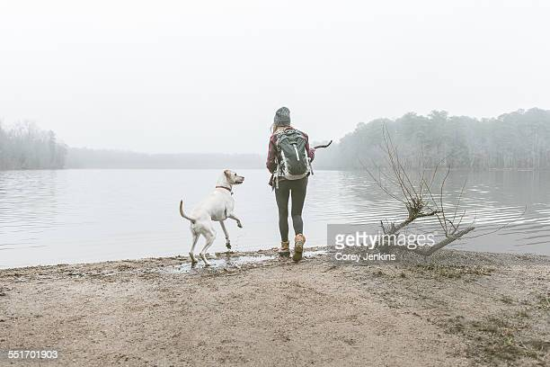 young woman throwing stick for her dog on misty lakeside - cary stockfoto's en -beelden
