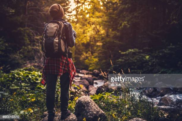 young woman  trail hiking alone in the forest at sunset - wilderness stock photos and pictures