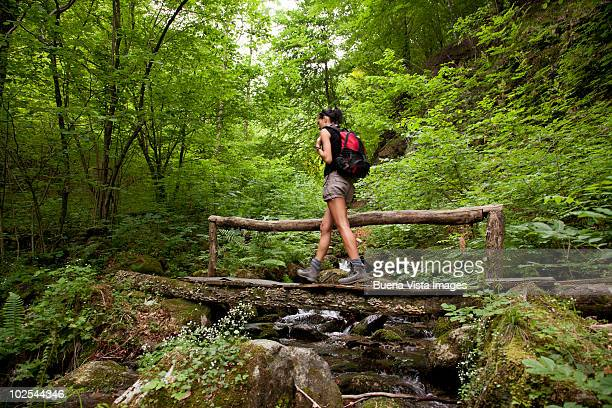 Young woman trekking in a forest