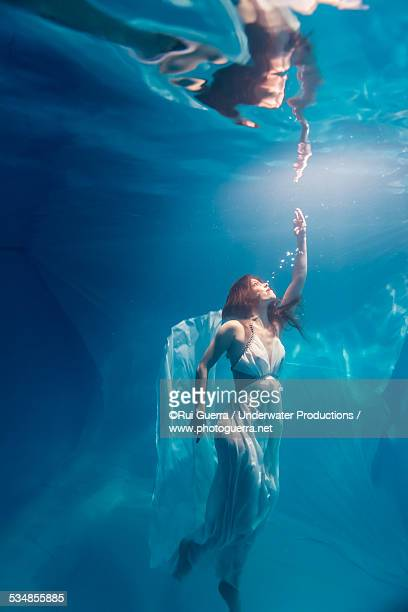 young woman underwater rising for the light - women in see through dresses stock photos and pictures