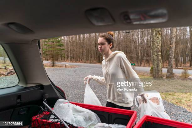 young woman unloading plastic reusable bins filled with groceries from the car's trunk to be delivered. - alex potemkin coronavirus stock pictures, royalty-free photos & images