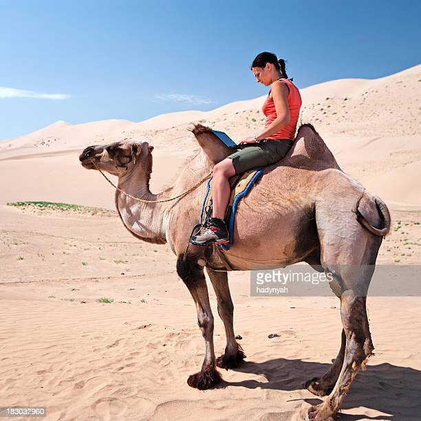Young woman using a laptop on the camel