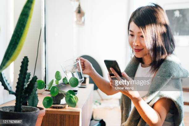 young woman using mobile phone while watering plants at home - mobile app stock pictures, royalty-free photos & images