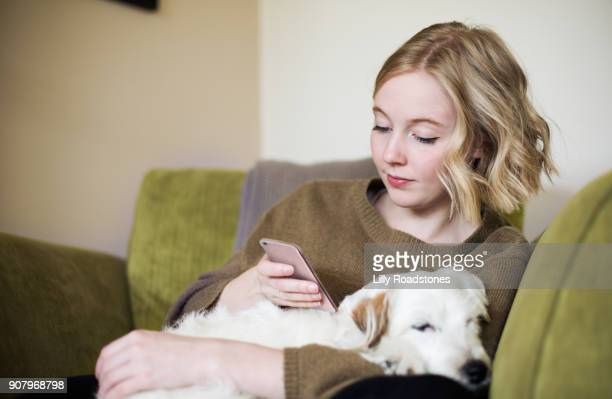 young woman using phone with dog on her lap - one young woman only stock pictures, royalty-free photos & images