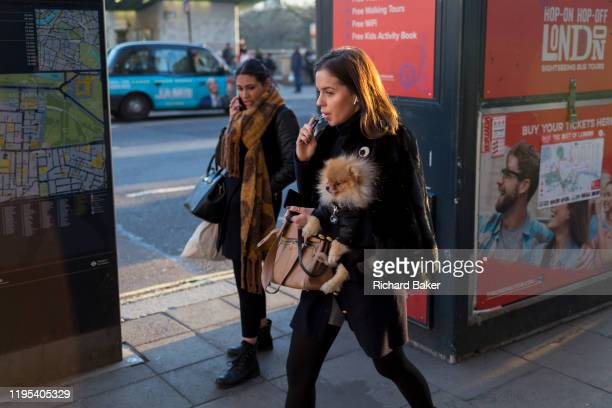 Young woman vapes while carrying her pet Pomeranian toy dog on Piccadilly, on 20th January 2020, in London, England.