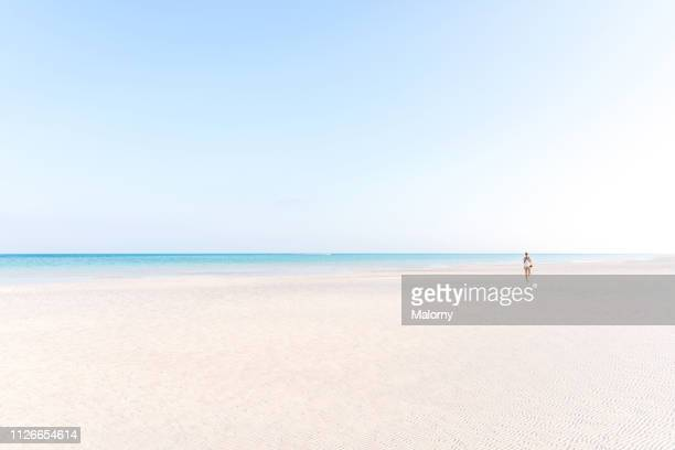 young woman walking at the beach looking at the ocean. - holbox island fotografías e imágenes de stock