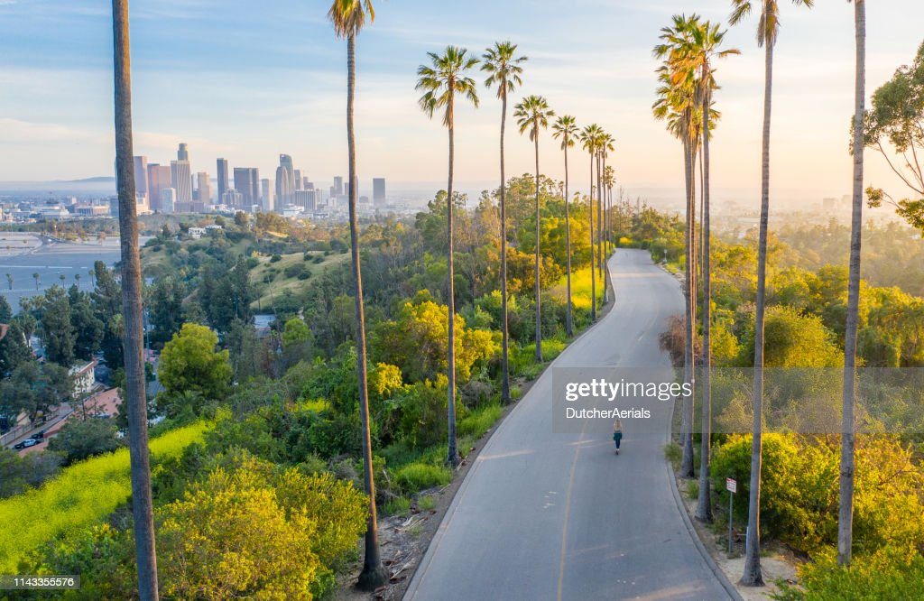 Young Woman Walking Down Palm Trees Street Revealing Downtown Los Angeles : Stock Photo