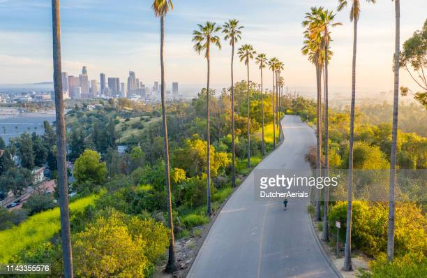 young woman walking down palm trees street revealing downtown los angeles - kalifornien stock-fotos und bilder