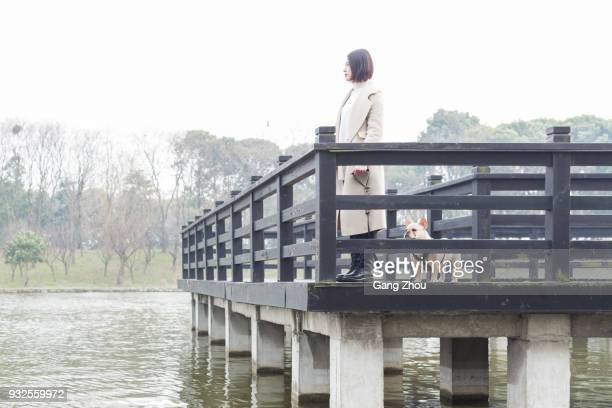 young woman walking her dog on footbridge - chinese bulldog stock pictures, royalty-free photos & images