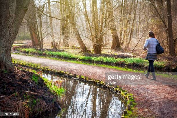 young woman walking in beautiful park in hillerød, denmark. - hillerod stock pictures, royalty-free photos & images