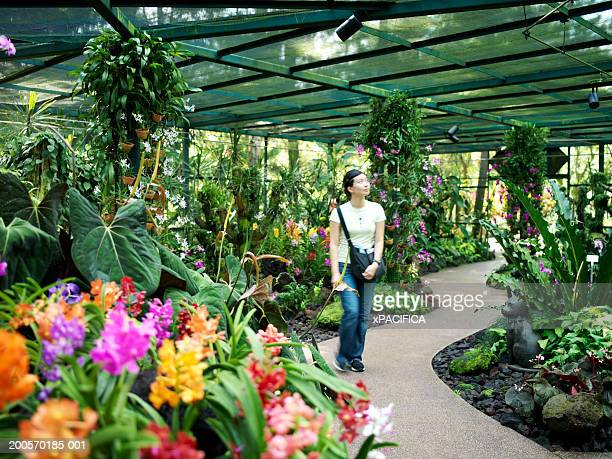young woman walking in orchid house - singapore botanic gardens stock photos and pictures