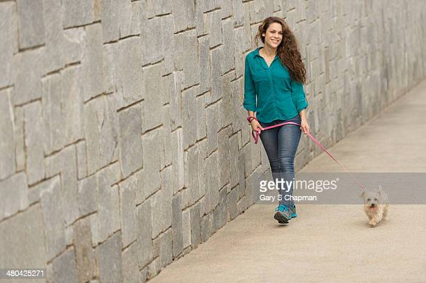 Young woman walking morkie dog