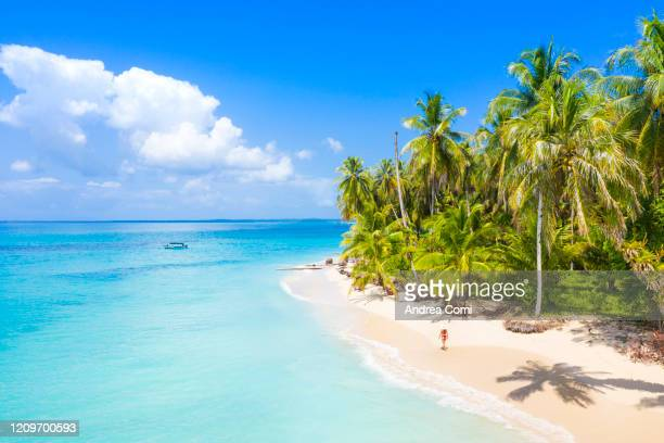 young woman walking on a desert tropical beach. zapatilla island, panama - panama stock pictures, royalty-free photos & images