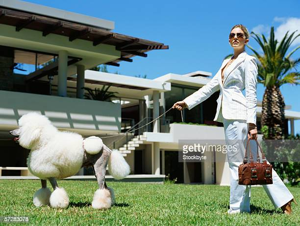 young woman walking on a lawn with her dog - white purse stock pictures, royalty-free photos & images