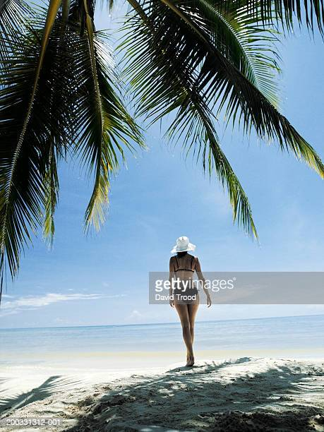 Young woman walking on beach, rear view