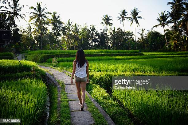 A young woman walking through a rice paddy
