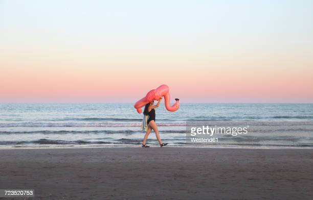 Young woman walking with inflatable pink flamingo on the beach at sunset