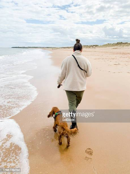 young woman walks on beach beside dog - wellington boot stock pictures, royalty-free photos & images